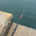 腕の日焼けは紀州釣りの証