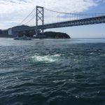 淡路島の東浦と西浦で潮の動きが異なる件