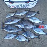 淡路島の紀州釣り釣果