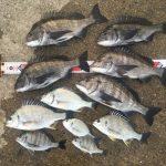 淡路島で紀州釣り、集合写真