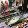 定点観測:いかりスーパーの鮮魚コーナー(2016.10.23)