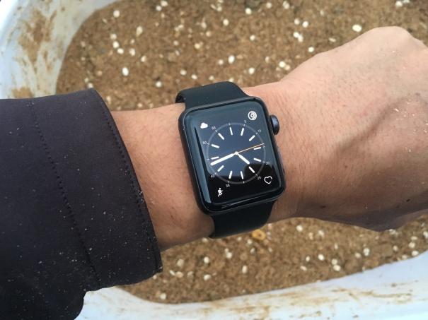 apple-watch-20161126
