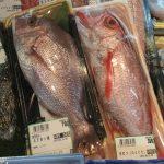 定点観測:いかりスーパーの鮮魚コーナー(2016.11.19)