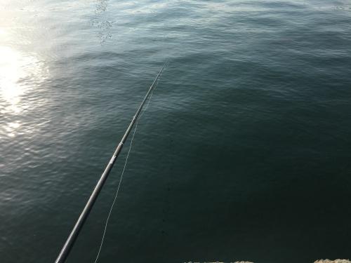 淡路島の海 紀州釣り