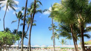 【ハワイ】ゴールデンウィークの南国を満喫して来ました