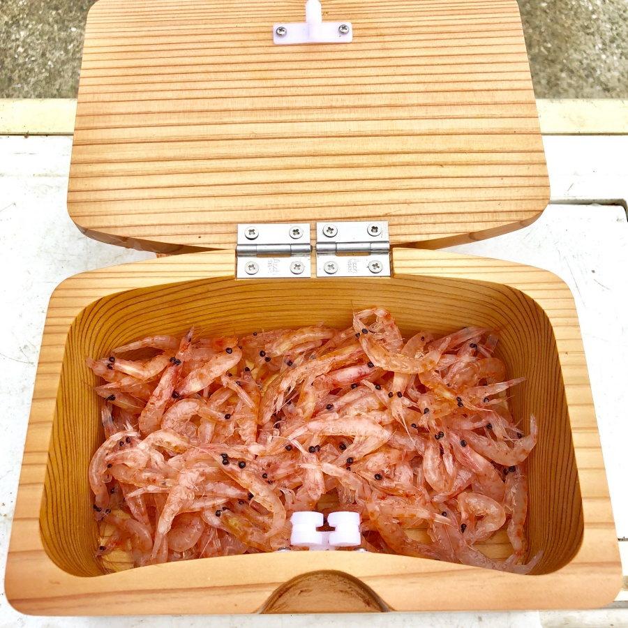 餌箱とオキアミ