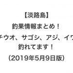 【淡路島】釣果情報まとめ!タチウオ、サゴシ、アジ、イワシ釣れてます!(2019年5月9日版)