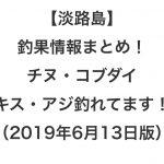 【淡路島】釣果情報まとめ!チヌ・コブダイ・キス・アジ釣れてます!(2019年6月13日版)