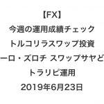 【FX】今週の運用成績チェック(トルコリラスワップ投資、ユーロ・ズロチ スワップサヤどり、トラリピ運用)2019年6月23日