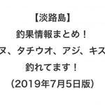 【淡路島】釣果情報まとめ!チヌ、タチウオ、アジ、キスが釣れてます!(2019年7月5日版)