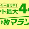 【お得】楽天市場の「お買い物マラソン」でポチったもの報告。(期間:8月4日20:00(日)〜8月9日(金)01:59)