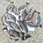 【秋爆】釣り人にとって待望の秋の爆食いがやってくる!準備はできていますか?
