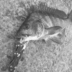そなえよつねに!釣りを楽しむためには、もしもの時への備えが重要