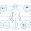 ジーンクエストで遺伝子診断をやってみた結果を公開!健康で長生きするために自分を知ることから始めよう!