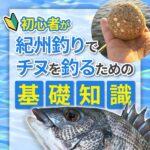 【出版】紀州釣りの基礎解説本をKindle出版しました!「初心者が紀州釣りでチヌを釣るための基礎知識」